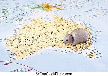 Toy wombat on map of Australia