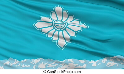 Toyama Capital City Close Up Flag - Toyama Capital City...