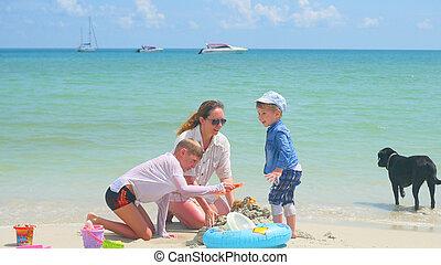 toys., île, famille, enfants, chien, jour, exotique, chaud, plage, jouer, sablonneux, heureux
