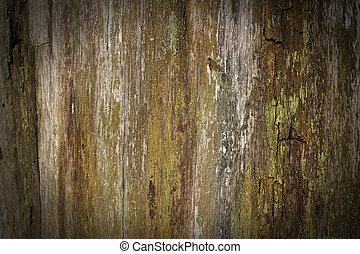 trä, bakgrund