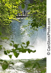 trä bro, över, vattenfall