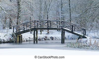 trä bro, täckta i snö