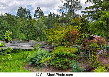 trä, fot överbrygg, hos, tsuru, ö, japanska trädgård