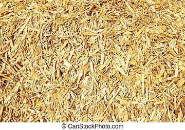 trä gå i flisor, för, a, biomass, förbränning