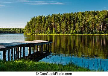 trä pir, och, skog, på, insjö