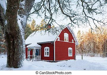 trä villa, sverige, röd