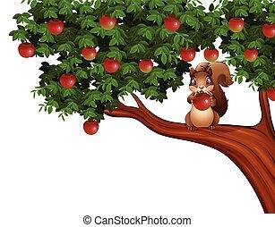 träd, äpple, ekorre, tecknad film