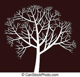 träd, branchy
