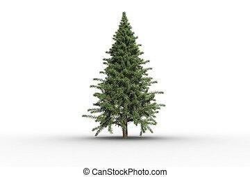träd, digital, gran, grön, förårsaket