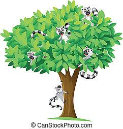 träd ekorre