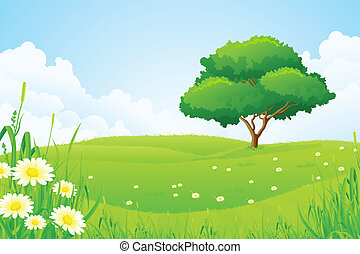 träd, grönt landskap