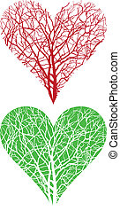 träd, hjärta
