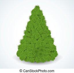 träd., illustration., realistisk, vektor, grön, jul