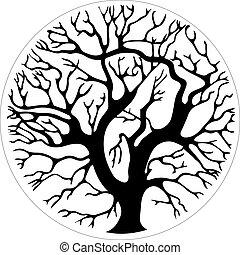 träd, in en krets