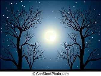 träd, måne