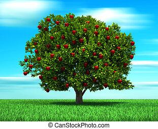 träd, med, äpple