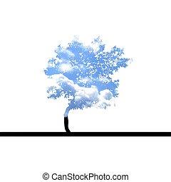 träd, med, sky