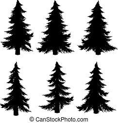 träd, silhuett, gran