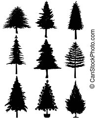 träd, silhuett, jul
