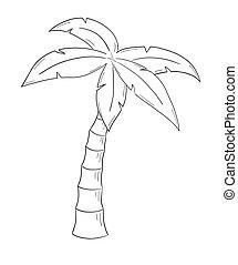 träd, skiss, palm