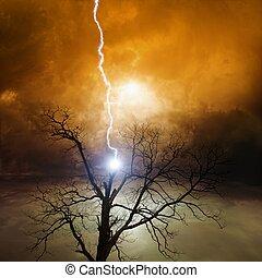 träd, strejkade medelst blixt