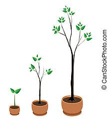 träd, tillväxt, vektor
