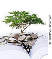 träd, växande, från, hög, av, mynter