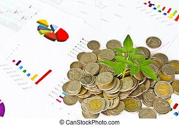 träd, växande, från, mynter, på, finansiell, grafer