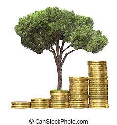 träd, växande, från, mynter