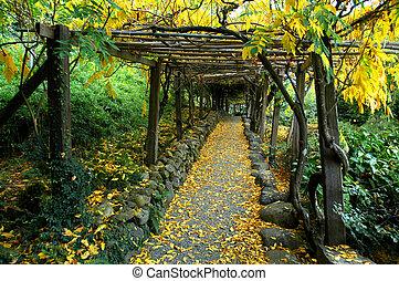 trädgård, axel