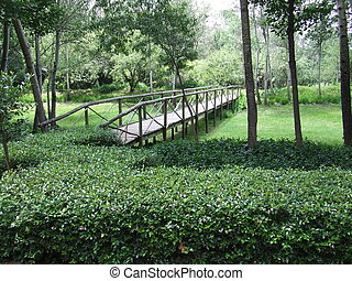 trädgård, bro