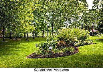 trädgård, i park