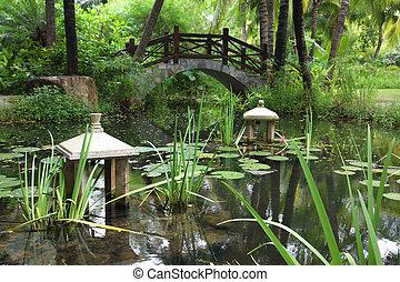 trädgård, porslin, kinesisk, syd, klassisk
