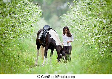 Trädgård, vacker, Häst, kvinna,  Äpple, utomhus, ung, vandrande,  pinto, dam
