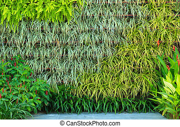 trädgård, vertikal