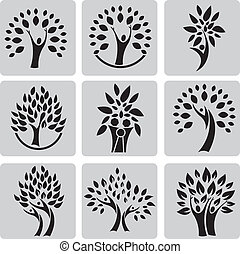 træ, familie