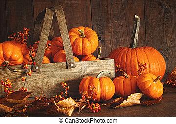 træ, farverig, baggrund, pumpkins