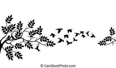 træ, flyve, silhuet, fugle