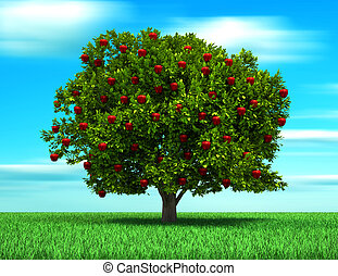 træ, hos, æble