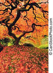 træ, ind, efterår