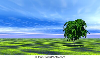 træ, ind, grønnes græs