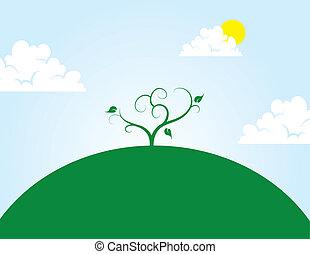 træ, på, høj