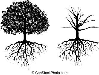 træ, røder
