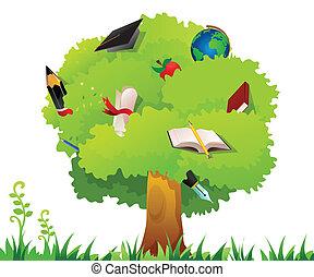 træ, undervisning