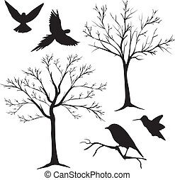 træ, vektor, 2, silhuet, fugle