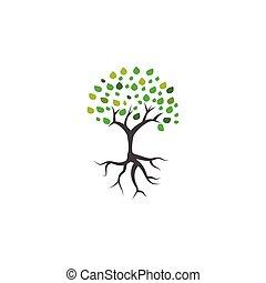 træ, vektor, skabelon, logo, rod, ikon