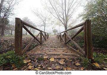 træagtig bro, ind, efterår