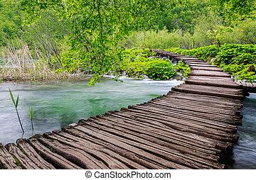 træagtig sti, ind, national parker, ind, plitvice