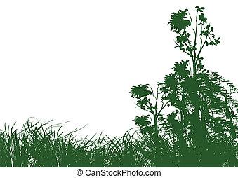 træer, og, græs, på hvide, baggrund