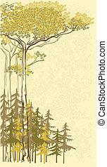 træer, vektor, fyrre, baggrund, stok, gran